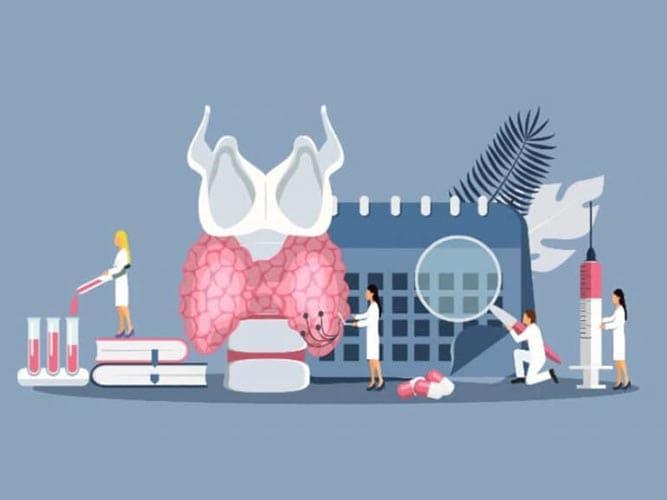 Особенности лечения при гипотиреозе. Показания к диагностике